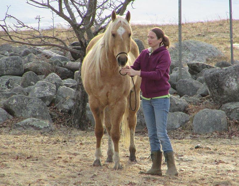 women holding rein of horse
