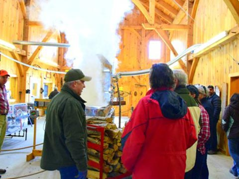 People chatting inside maple syrup barn