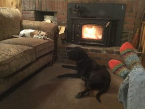 Dogs, wood burning stove, cozy Adirondack winter scene.